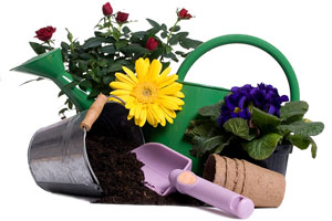 gardening equipment and accessories