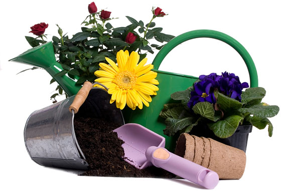 Gardening Equipment Plants Potting Soil Trowel Watering Can