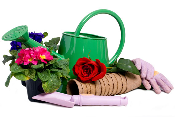gardening tools and accessories